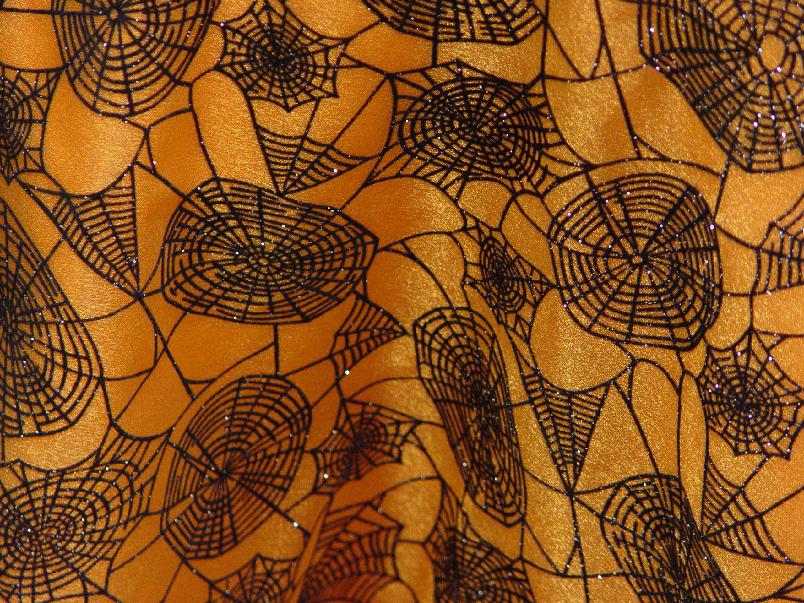 Halloween Spider Web Organza